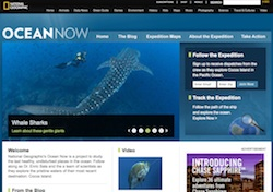 Ocean Now Screenshot
